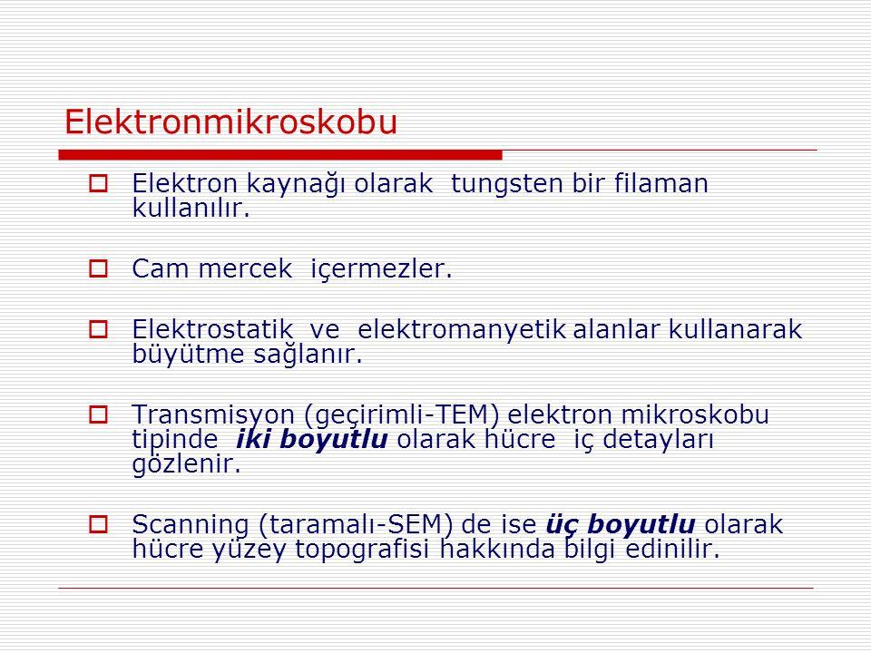 Elektronmikroskobu  Elektron kaynağı olarak tungsten bir filaman kullanılır.
