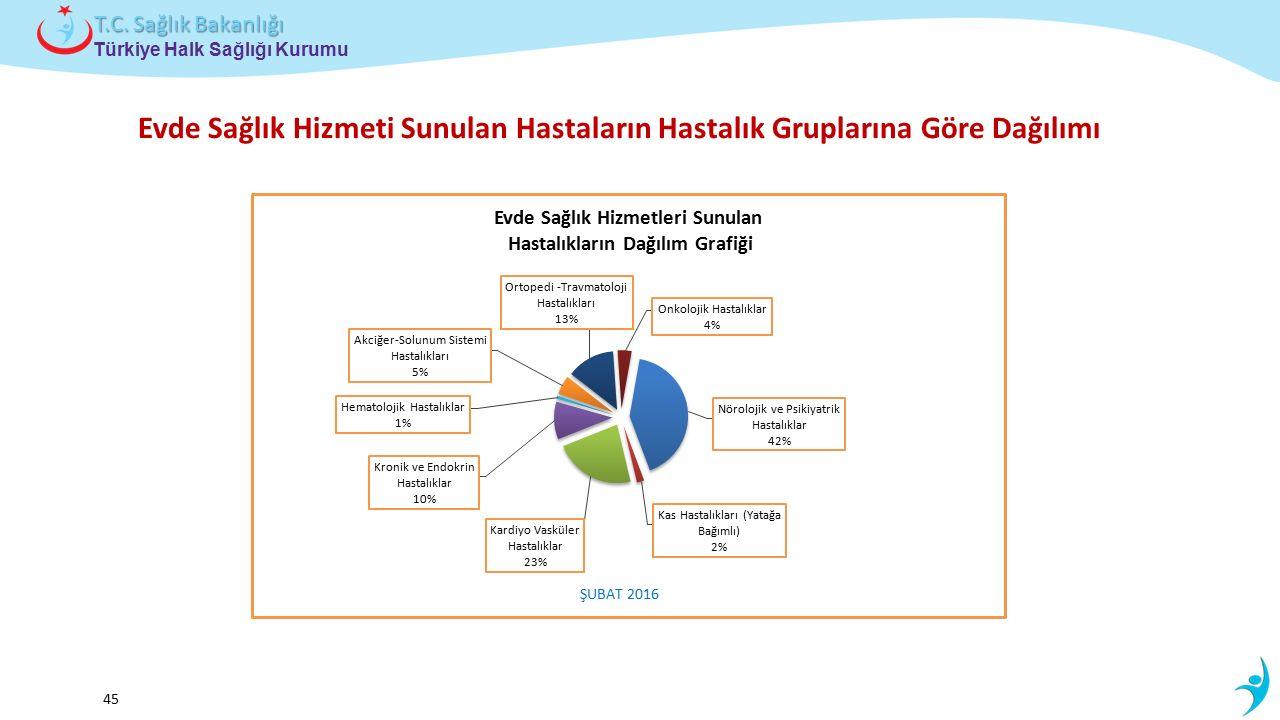 Çocuk ve Ergen Sağlığı Daire Başkanlığı Türkiye Halk Sağlığı Kurumu T.C. Sağlık Bakanlığı 45 Evde Sağlık Hizmeti Sunulan Hastaların Hastalık Grupların