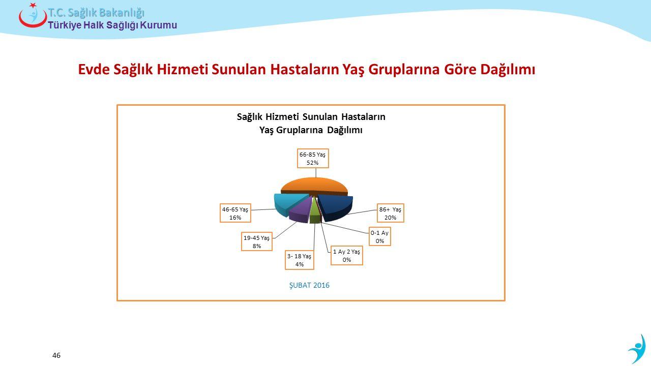 Çocuk ve Ergen Sağlığı Daire Başkanlığı Türkiye Halk Sağlığı Kurumu T.C. Sağlık Bakanlığı 46 Evde Sağlık Hizmeti Sunulan Hastaların Yaş Gruplarına Gör
