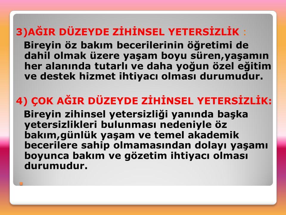 Anadolu Üniversitesi, Abant İzzet Baysal Üniversitesi, Ankara Üniversitesi, İstanbul Üniversitesi, Trakya Üniversitesi'nde toplam sayısı 600 – 1000 civarında olan öğretilebilir zihinsel engelli kısmi süreli – seanslı eğitim almaktadır.