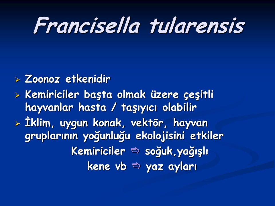 Tularemi Francisella tularensis  Hayvanlar arasında artropodlarla yayılır.