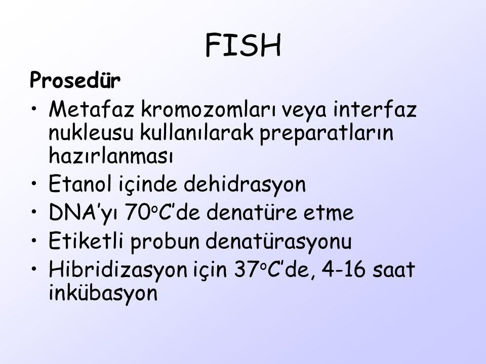 FISH Prosedür Metafaz kromozomları veya interfaz nukleusu kullanılarak preparatların hazırlanması Etanol içinde dehidrasyon DNA'yı 70 o C'de denatüre