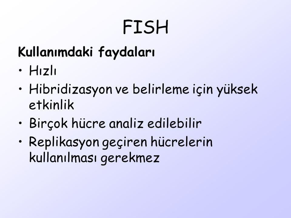 FISH Kullanımdaki faydaları Hızlı Hibridizasyon ve belirleme için yüksek etkinlik Birçok hücre analiz edilebilir Replikasyon geçiren hücrelerin kullan
