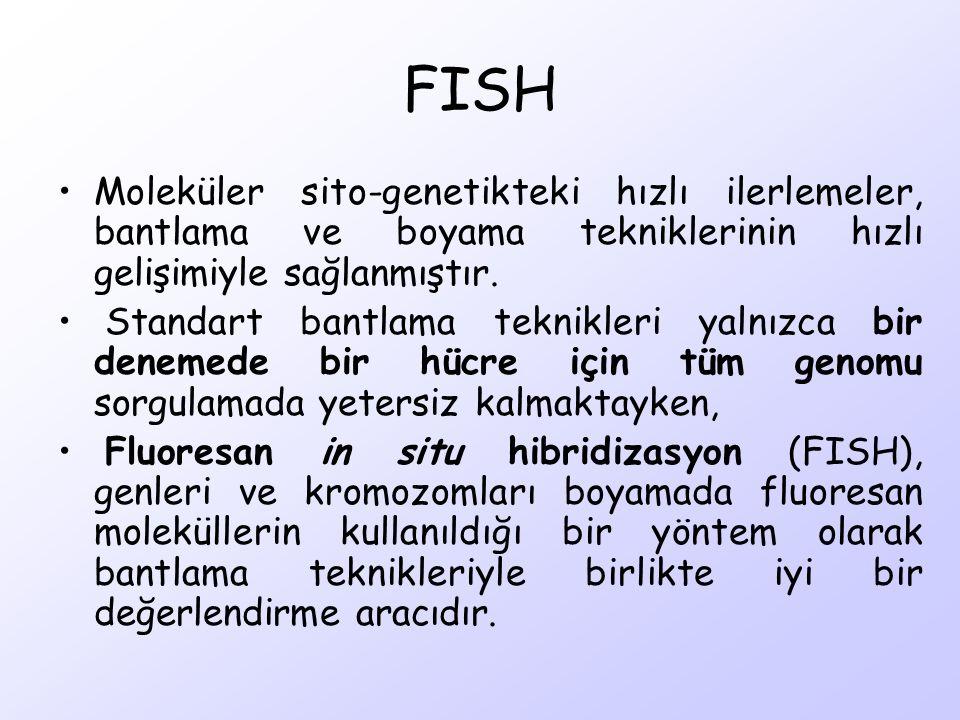 FISH Moleküler sito-genetikteki hızlı ilerlemeler, bantlama ve boyama tekniklerinin hızlı gelişimiyle sağlanmıştır. Standart bantlama teknikleri yalnı
