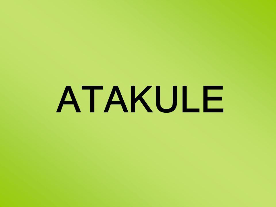 ATAKULE