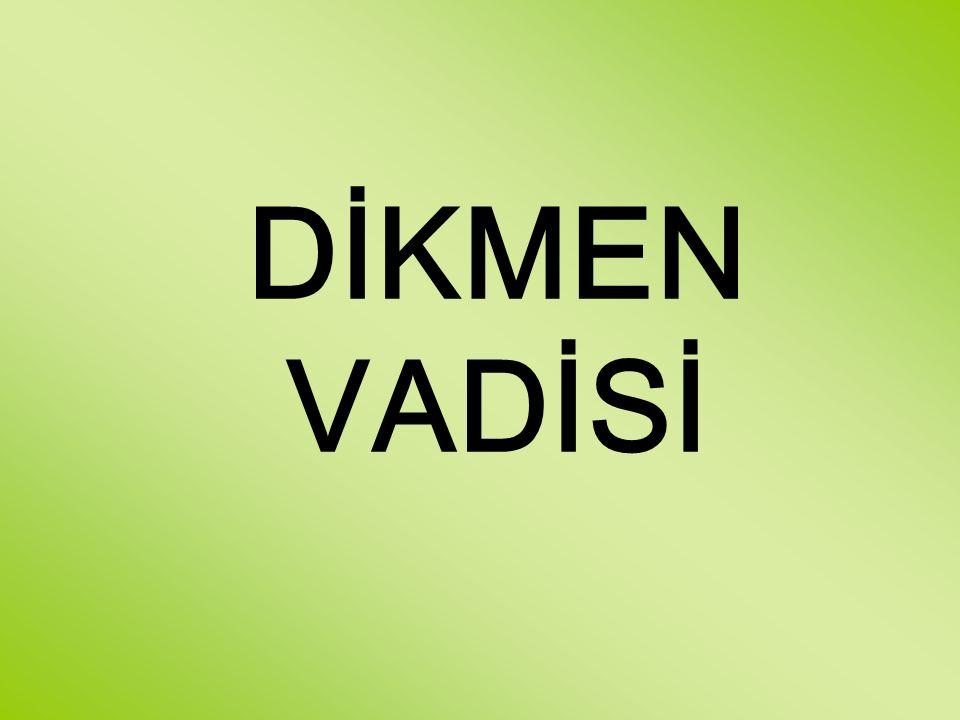 DİKMEN VADİSİ