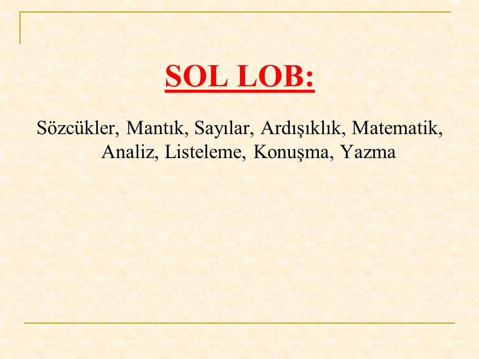 SOL LOB: Sözcükler, Mantık, Sayılar, Ardışıklık, Matematik, Analiz, Listeleme, Konuşma, Yazma