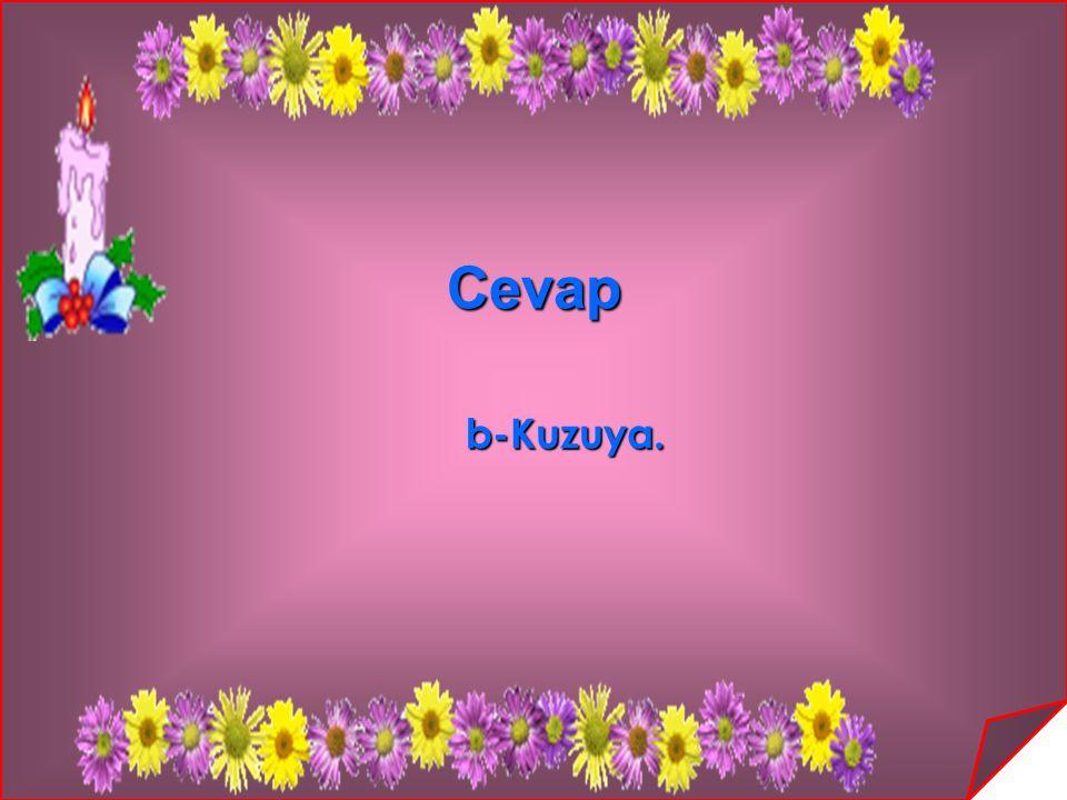 Cevap b-Kuzuya. b-Kuzuya.