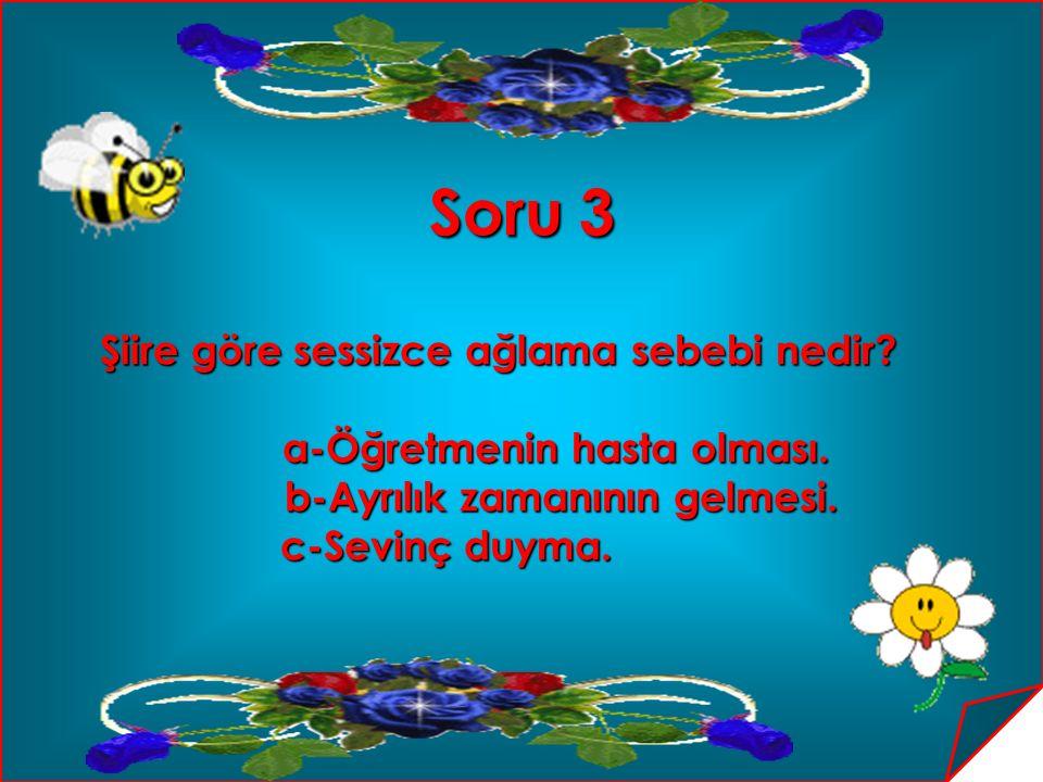 Cevap 18 a-Sakarya-Sinop- Samsun-Sivas a-Sakarya-Sinop- Samsun-Sivas