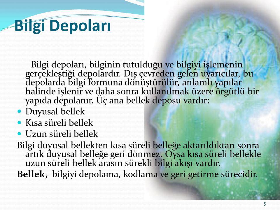 Bilgi Depoları Bilgi depoları, bilginin tutulduğu ve bilgiyi işlemenin gerçekleştiği depolardır.