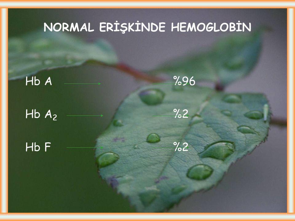 """Hemoglobinopatiler Globin sentez defektleri, klinikte """" hemoglobinopati """" olarak adlandırılan hastalıklara yol açar Orak hücreli anemi (Hb S ) :  zin"""