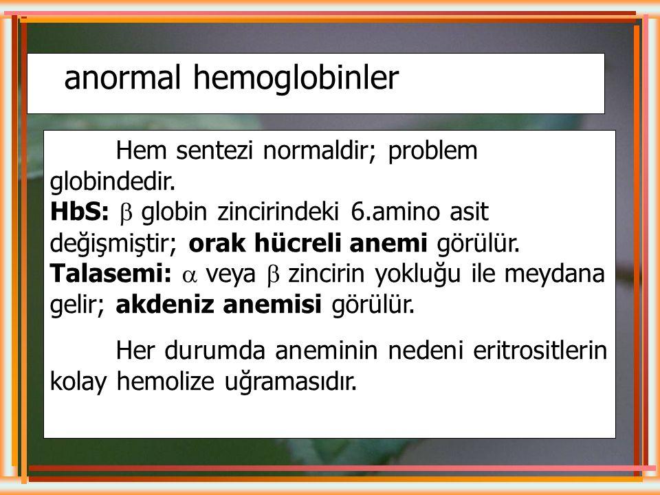 NORMAL ERİŞKİNDE HEMOGLOBİN Hb A%96 Hb A 2 %2 Hb F%2