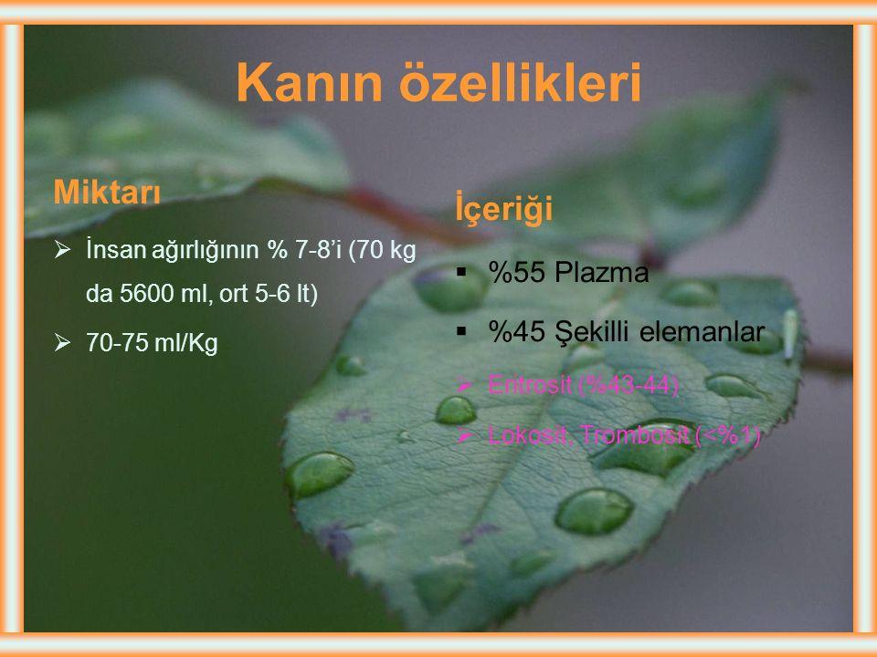 Demir durumunun değerlendirilmesi Metabolik havuz; Kanda hemoglobin düzeyinin ölçülmesi Depo havuzu; serum ferritin düzeyinin ölçülmesi ile saptanır.