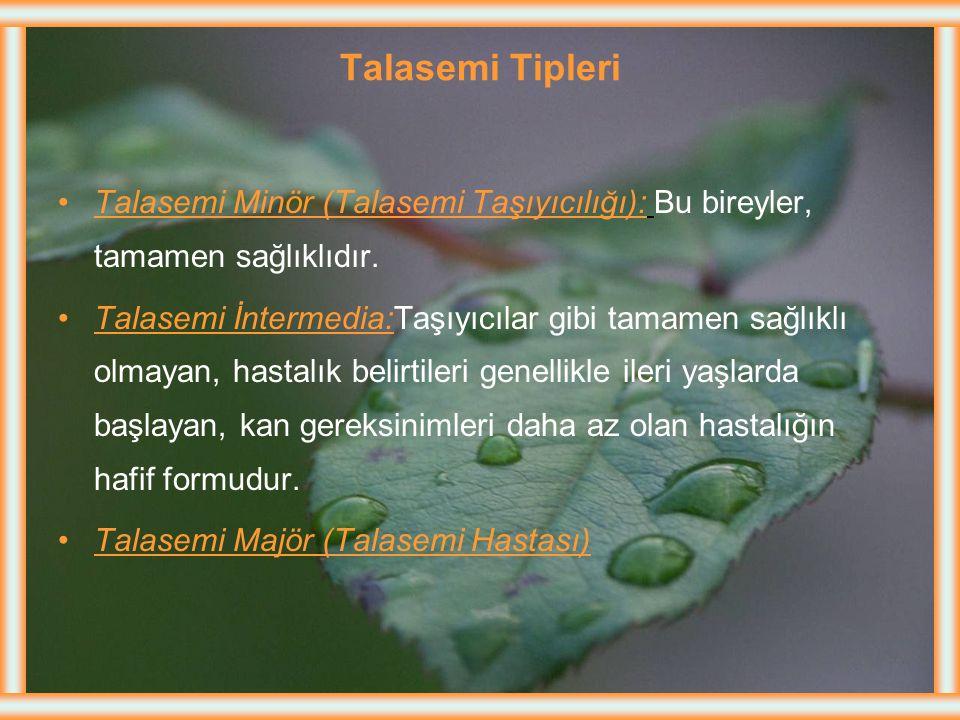 Talasemi (Akdeniz Anemisi)-Dvm Yurdumuzda en sık görülen yerler Batı Anadolu, Urfa, Gaziantep yöreleridir. Homozigot: Hem anne hem de baba da talasemi