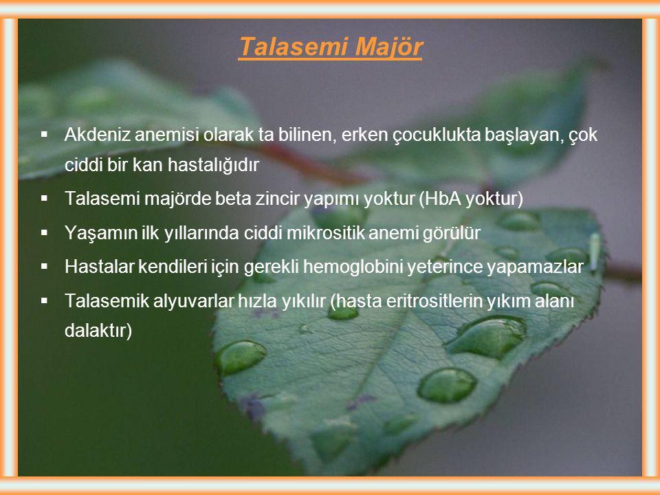 Talasemi Minör (talasemi taşıyıcılığı)  Talasemi taşıyıcıları hasta olmayıp sadece bir genetik (çekinik) defekt taşırlar, Talasemi minör bulaşıcı ve