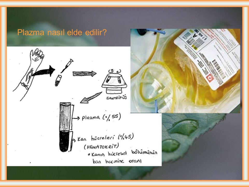 Tedavi ve Bakım Kan volümünü, viskositesinin ve kemik iliği aktivitesinin ↓.