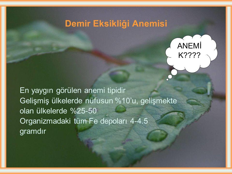 BESLENME BOZUKLUĞUNA BAĞLI ANEMİLER 1. Demir eksikliği anemisi 2. Megaloblastik anemi Vitamin B 12 pernisiyöz anemi Folik asit eksikliğine bağlı anemi