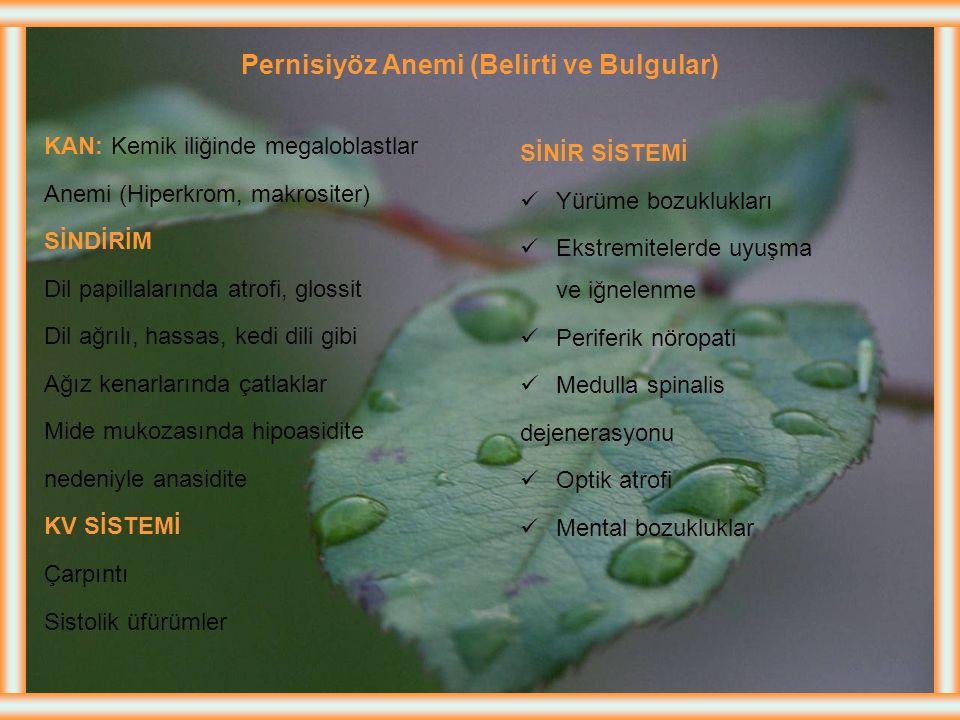 Pernisiyöz Anemi Etyolojisi Beslenme Yetersizliği: Nadirdir Emilim Bozukluğu: B12 vitamininin emilimi için IF'e gereksinim vardır. IF eksikliğine nede