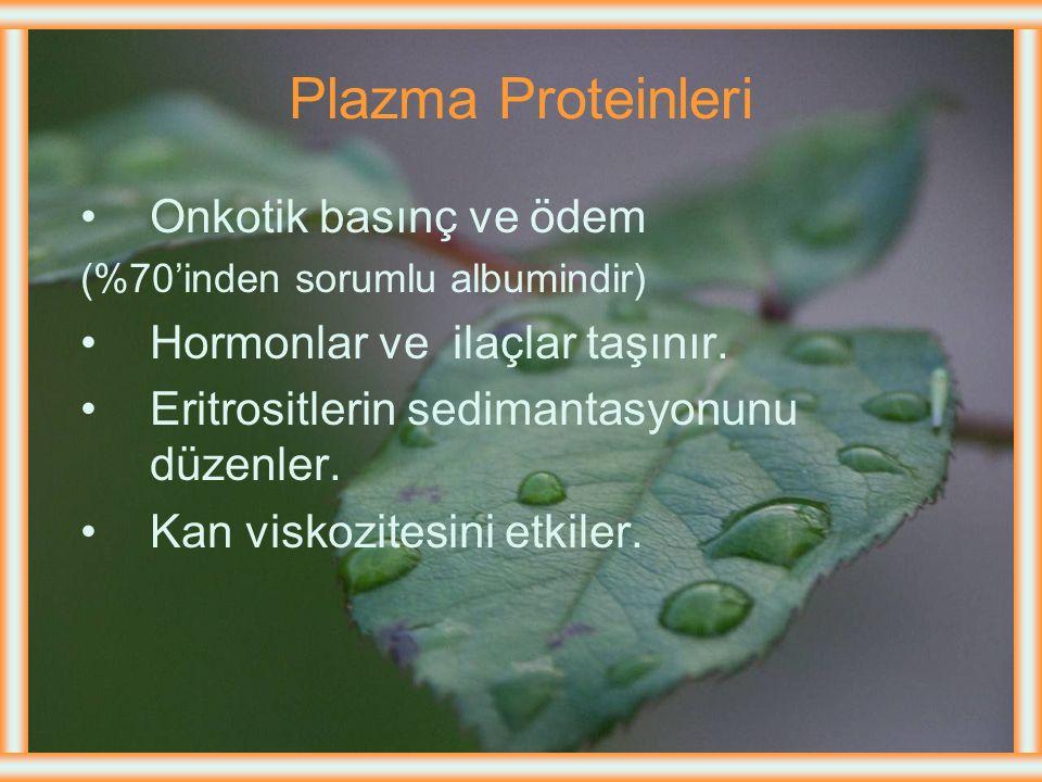 Plazma Proteinleri Onkotik basınç ve ödem (%70'inden sorumlu albumindir) Hormonlar ve ilaçlar taşınır.