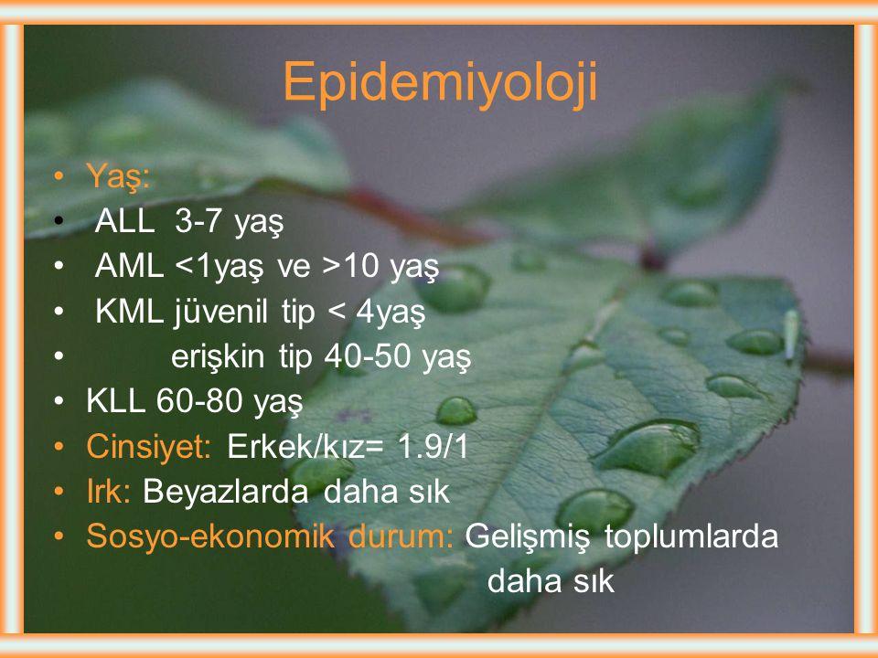 LÖSEMİLERİN SINIFLANDIRILMASI Gidişine Göre Akut Kronik Morfolojisine Göre Lenfosit kaynaklı (Lenfoblastik, lenfositik) Myelosit kaynaklı (Myeloblasti