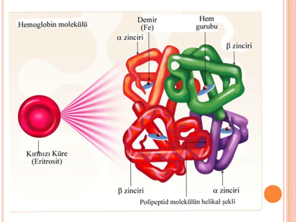 İMMUNGLOBULİNLER:  Plazmanın Ig G antikor bileşenini içeren konsantre edilmiş solüsyondur.