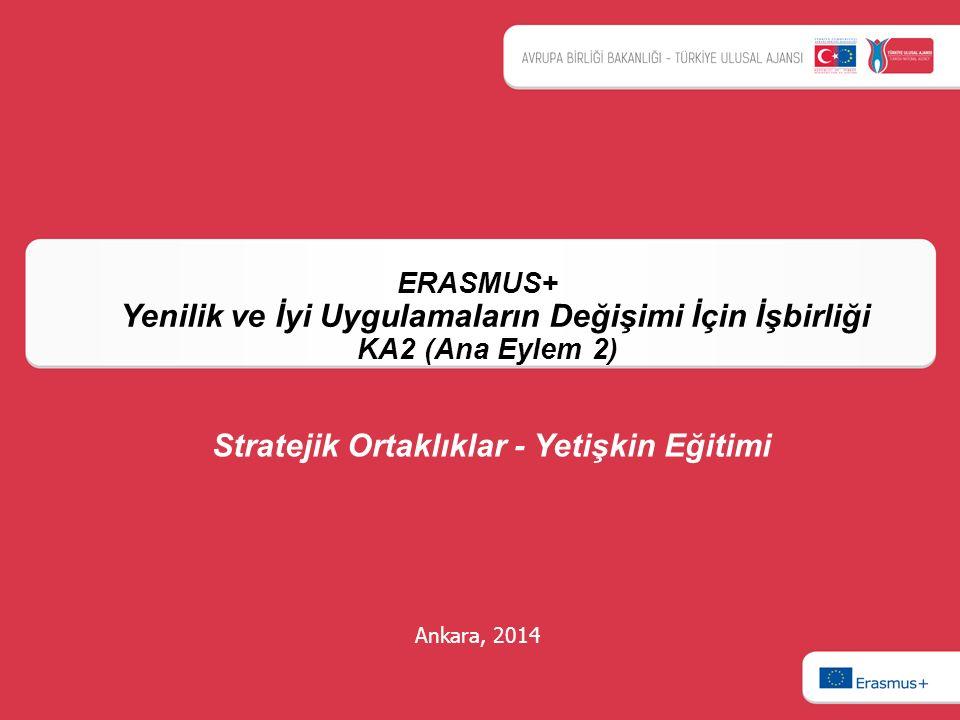 Ankara, 2014 ERASMUS+ Yenilik ve İyi Uygulamaların Değişimi İçin İşbirliği KA2 (Ana Eylem 2) Stratejik Ortaklıklar - Yetişkin Eğitimi