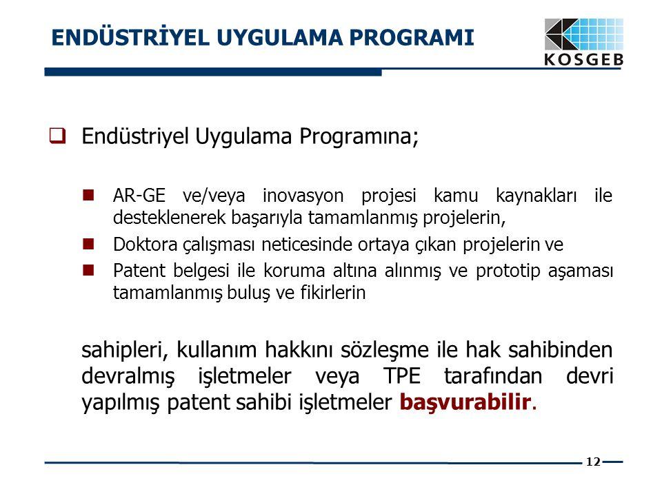 12  Endüstriyel Uygulama Programına; AR-GE ve/veya inovasyon projesi kamu kaynakları ile desteklenerek başarıyla tamamlanmış projelerin, Doktora çalı