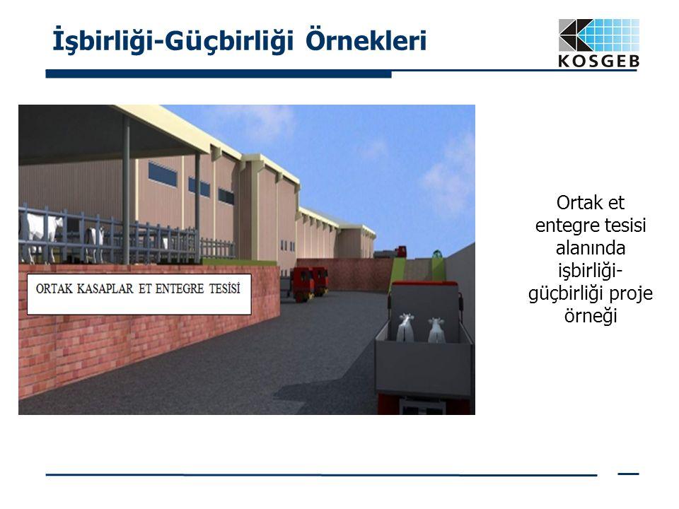 İşbirliği-G üç birliği Örnekleri Ortak et entegre tesisi alanında işbirliği- güçbirliği proje örneği