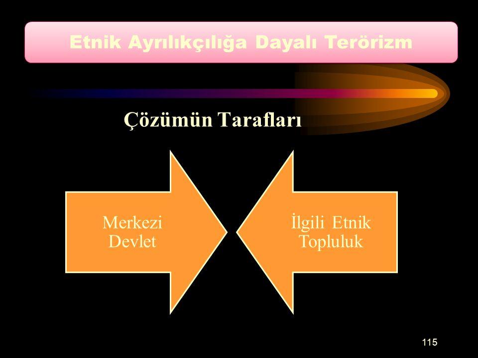 Çözümün Tarafları Merkezi Devlet İlgili Etnik Topluluk Etnik Ayrılıkçılığa Dayalı Terörizm 115