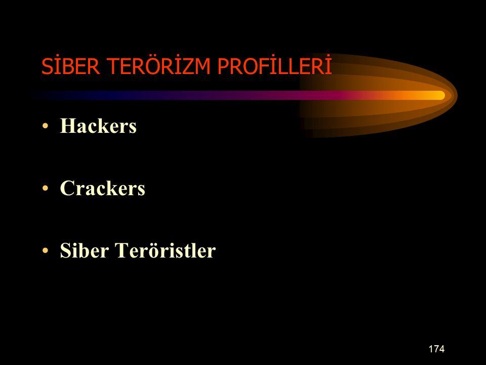 SİBER TERÖRİZM PROFİLLERİ Hackers Crackers Siber Teröristler 174