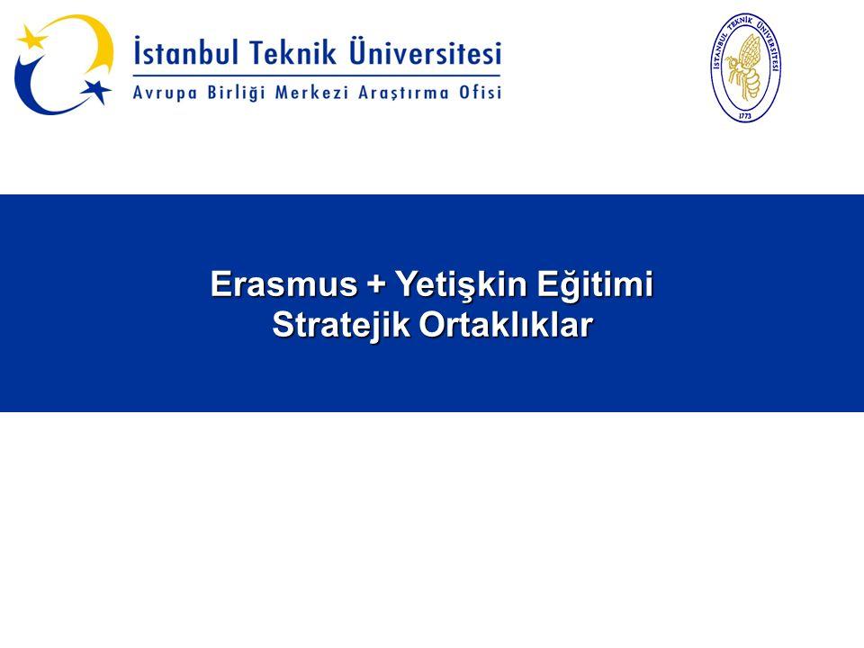 Erasmus + Yetişkin Eğitimi Stratejik Ortaklıklar Erasmus + Yetişkin Eğitimi Stratejik Ortaklıklar