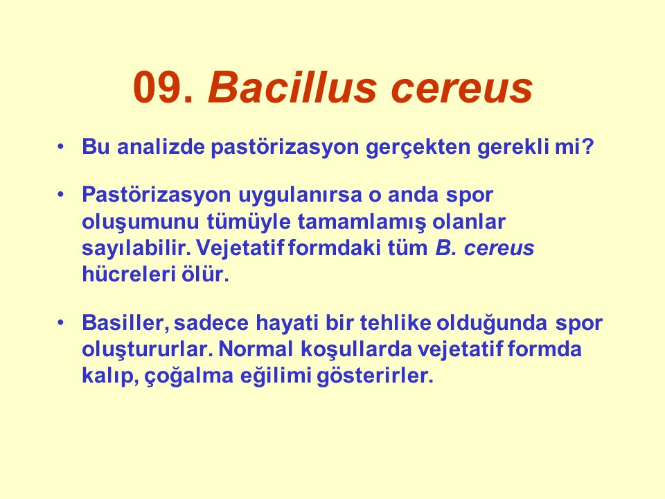 09. Bacillus cereus Bu analizde pastörizasyon gerçekten gerekli mi.