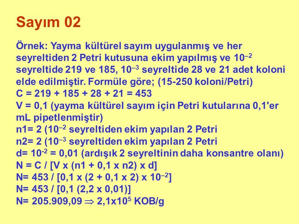 Sayım 03 Aynı sonuçlar 25-250 koloni/ Petri ile değerlendirilirse C = 219 + 185 + 28 + 21 = 453 C = 219 + 185 + 28 = 432 V = 0,1 (yayma kültürel sayım için Petri kutularına 0,1 er mL pipetlenmiştir) n1= 2 (10 –2 seyreltiden ekim yapılan 2 Petri n2= 1 (10 –3 seyreltiden ekim yapılan 1 Petri d= 10 –2 = 0,01 (ardışık 2 seyreltinin daha konsantre olanı N= C / [V x (n1 + 0,1 x n2) x d] N= 432 / [0,1 x (2 + 0,1 x 1) x 10 –2 ] N= 432 / [0,1 (2,1 x 0,01)] N= 205.714,29  2,1x10 5