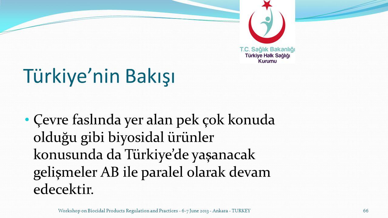 Türkiye'nin Bakışı Çevre faslında yer alan pek çok konuda olduğu gibi biyosidal ürünler konusunda da Türkiye'de yaşanacak gelişmeler AB ile paralel ol
