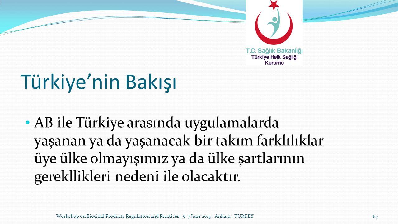 Türkiye'nin Bakışı AB ile Türkiye arasında uygulamalarda yaşanan ya da yaşanacak bir takım farklılıklar üye ülke olmayışımız ya da ülke şartlarının ge