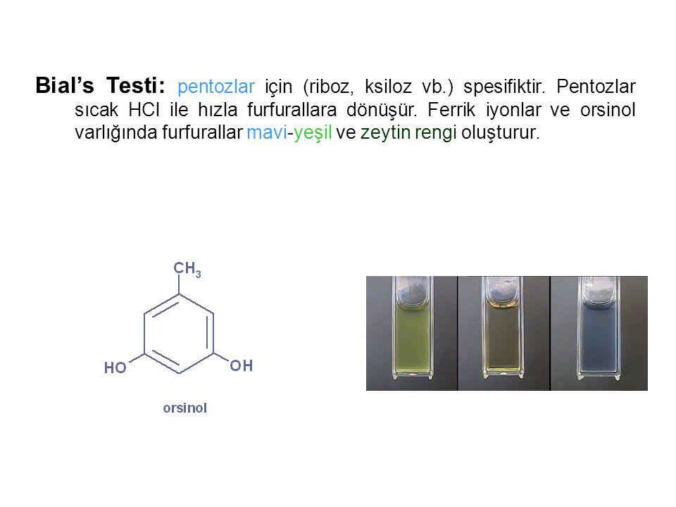 Bial's Testi: pentozlar için (riboz, ksiloz vb.) spesifiktir. Pentozlar sıcak HCl ile hızla furfurallara dönüşür. Ferrik iyonlar ve orsinol varlığında