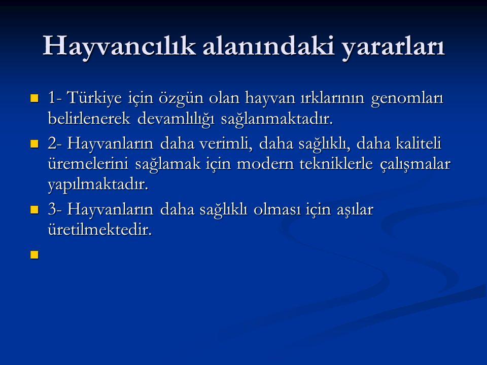 Hayvancılık alanındaki yararları 1- Türkiye için özgün olan hayvan ırklarının genomları belirlenerek devamlılığı sağlanmaktadır. 1- Türkiye için özgün
