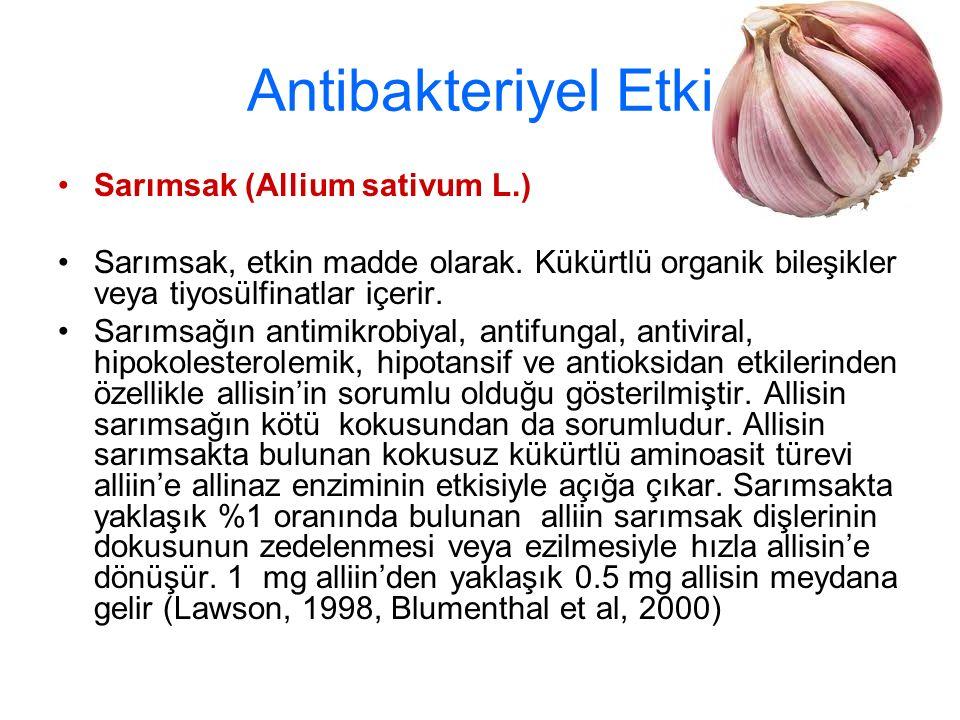 Antibakteriyel Etki Sarımsak (Allium sativum L.) Sarımsak, etkin madde olarak. Kükürtlü organik bileşikler veya tiyosülfinatlar içerir. Sarımsağın ant
