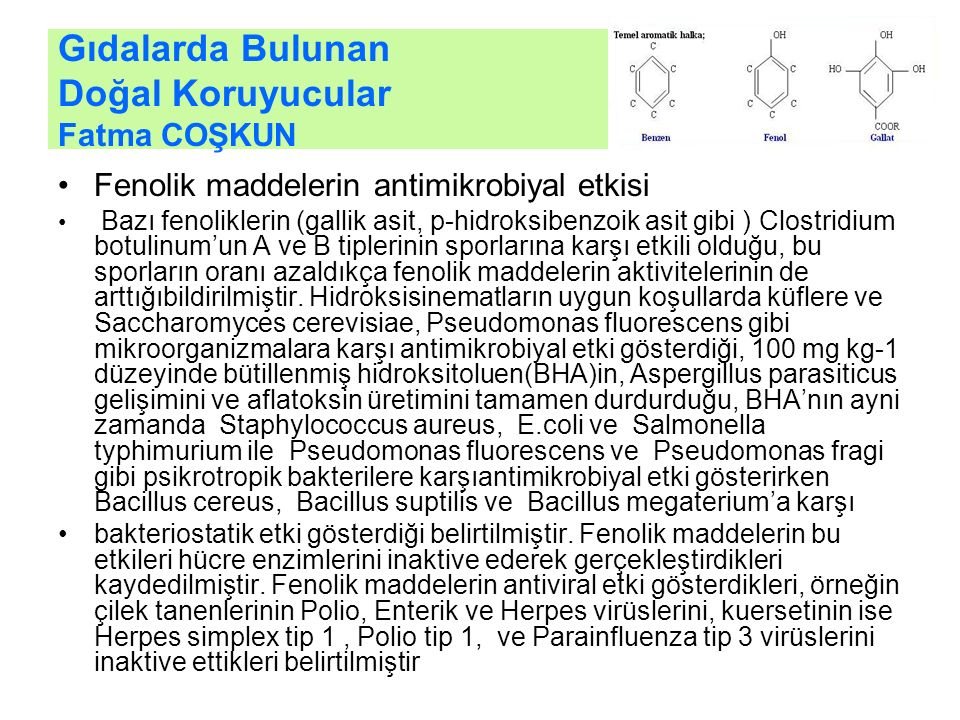Gıdalarda Bulunan Doğal Koruyucular Fatma COŞKUN Fenolik maddelerin antimikrobiyal etkisi Bazı fenoliklerin (gallik asit, p-hidroksibenzoik asit gibi ) Clostridium botulinum'un A ve B tiplerinin sporlarına karşı etkili olduğu, bu sporların oranı azaldıkça fenolik maddelerin aktivitelerinin de arttığıbildirilmiştir.