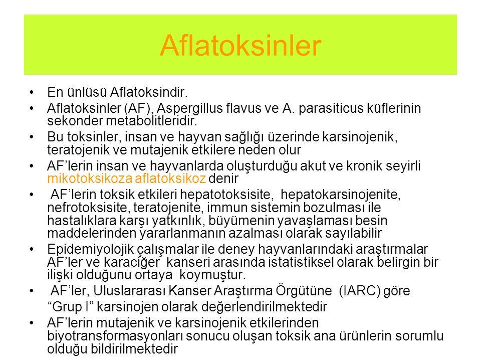 En ünlüsü Aflatoksindir. Aflatoksinler (AF), Aspergillus flavus ve A. parasiticus küflerinin sekonder metabolitleridir. Bu toksinler, insan ve hayvan