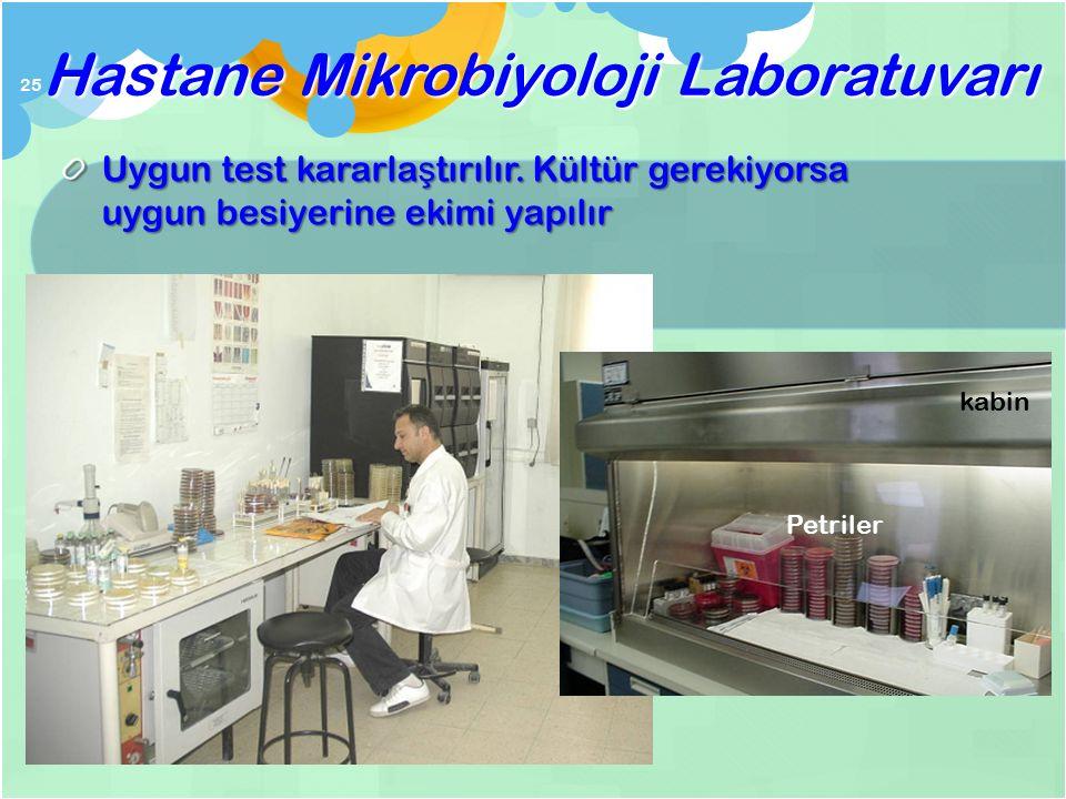 Lab materyalin kabulüne karar verir ve materyalin makro ve mikroskopik özellikleri incelenir Hastane Mikrobiyoloji Laboratuvarı 24