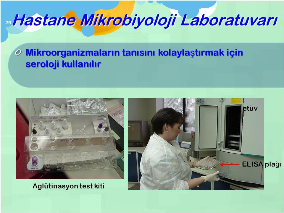 Üreme varsa ileri tanımlama testleri yapılır Gerekiyorsa antibiyotik duyarlık ölçülür Hastane Mikrobiyoloji Laboratuvarı 28