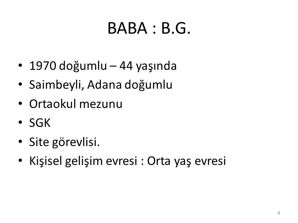 BABA : B.G. 1970 doğumlu – 44 yaşında Saimbeyli, Adana doğumlu Ortaokul mezunu SGK Site görevlisi.