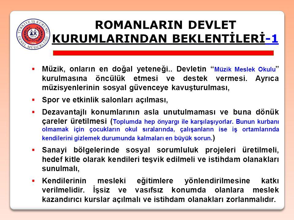 ROMANLARIN DEVLET KURUMLARINDAN BEKLENTİLERİ-1  Müzik, onların en doğal yeteneği..