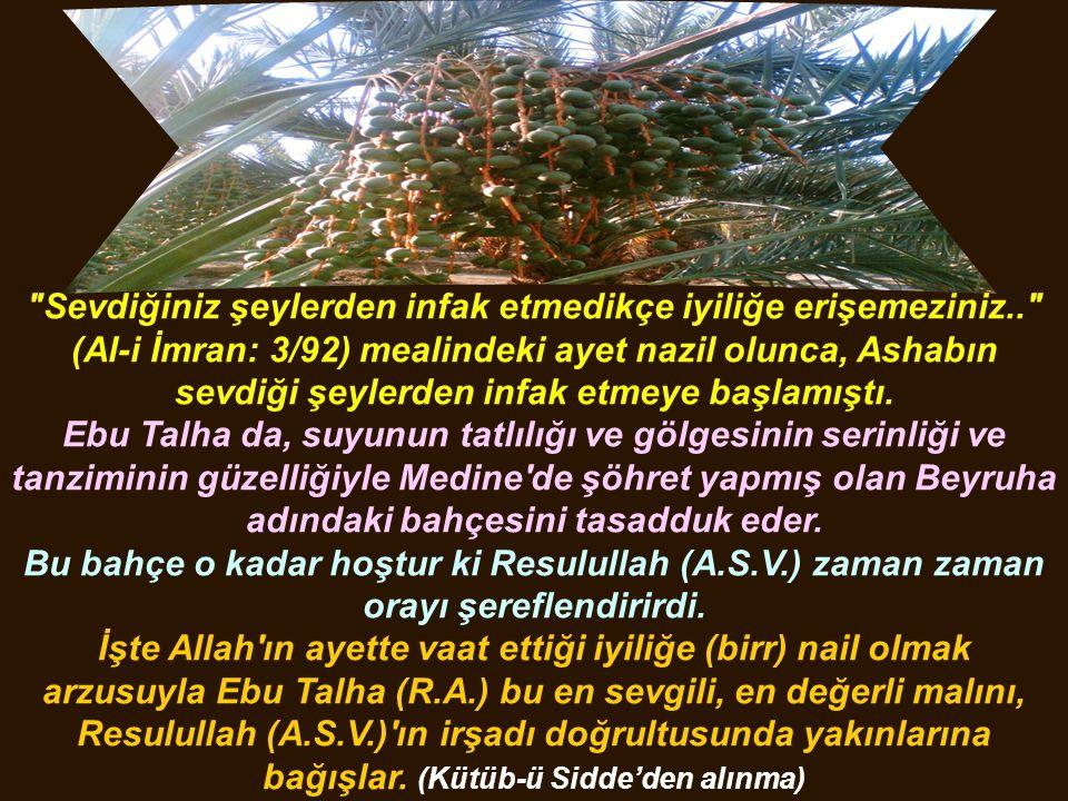 Sevdiğiniz şeylerden infak etmedikçe iyiliğe erişemeziniz.. (Al-i İmran: 3/92) mealindeki ayet nazil olunca, Ashabın sevdiği şeylerden infak etmeye başlamıştı.