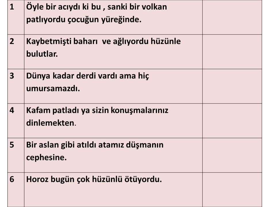 TEST ANLAM BİLGİSİ
