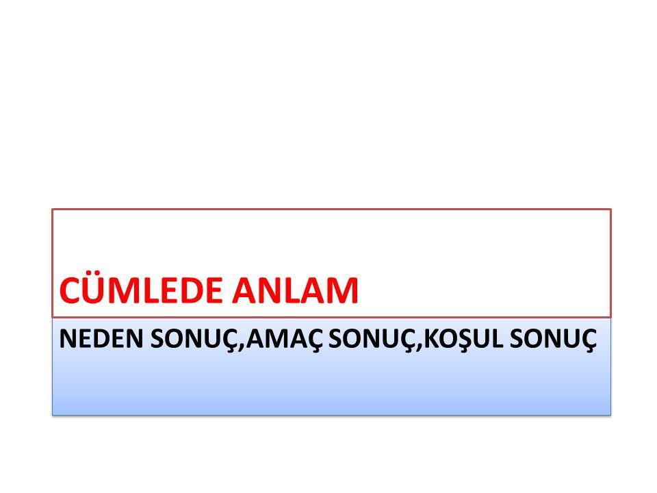 ALES (I) İstanbul'un Tünel olarak bilinen ilk metrosu buhar gücüyle çalışıyordu.