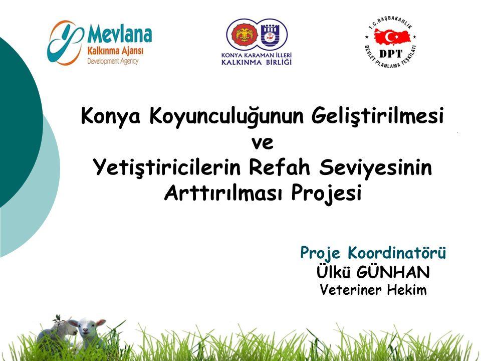 Proje Koordinatörü Ülkü GÜNHAN Veteriner Hekim Konya Koyunculuğunun Geliştirilmesi ve Yetiştiricilerin Refah Seviyesinin Arttırılması Projesi
