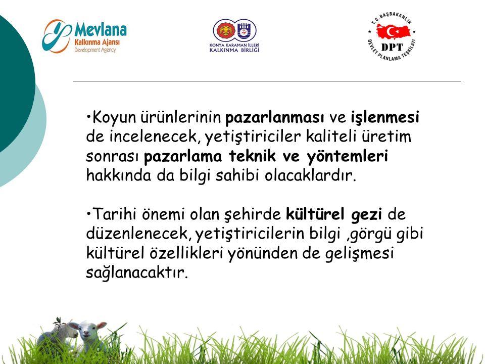 20 Koyun ürünlerinin pazarlanması ve işlenmesi de incelenecek, yetiştiriciler kaliteli üretim sonrası pazarlama teknik ve yöntemleri hakkında da bilgi sahibi olacaklardır.