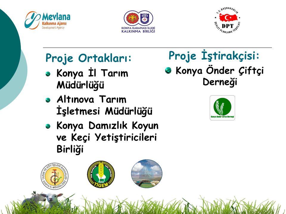 3 Proje Ortakları: Konya İl Tarım Müdürlüğü Altınova Tarım İşletmesi Müdürlüğü Konya Damızlık Koyun ve Keçi Yetiştiricileri Birliği Proje İştirakçisi: Konya Önder Çiftçi Derneği